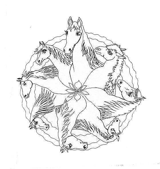 Pferde  Ausmalbilder fr Pferdefreunde