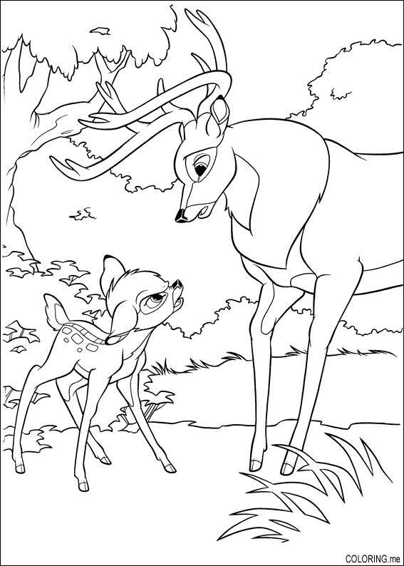 coloring page   bambi is not happy with his father