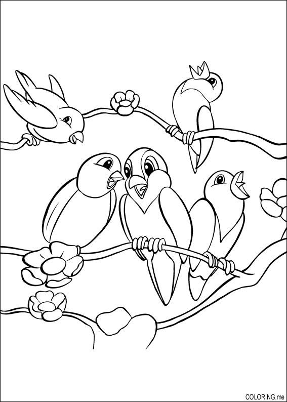Coloring page birds on tree coloring me