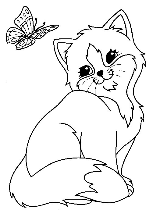 coloring page chat papillon coloringme
